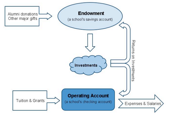 Overview of a typical school's finance structure. Diagram by Princeton Coalition for Endowment Responsibility.